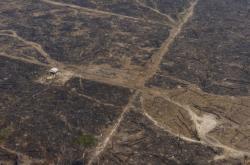 Spálená země po požáru v Brazílii