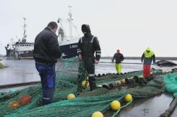 Rybářské sítě ve finském přístavu Poti