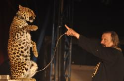 Cirkus Jo Joo (2012)