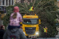 Převoz vánočního stromu pro Liberec