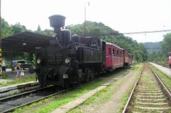 Parní lokomotiva 310 -
