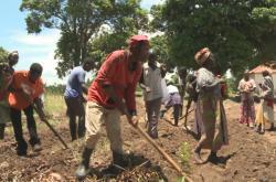 85 procent obyvatel Angoly žije z toho, co si vypěstuje