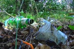 Odpadky v lese