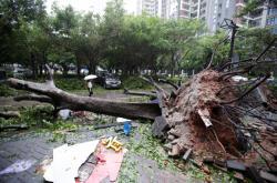 Následky tajfunu Mangkhut v čínském městě Šen-čen