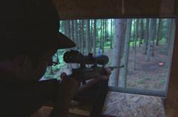 Medvěda se pokusí uspat veterinář narkotizační puškou