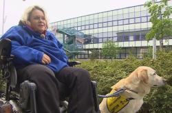 Kateřina Konečná musela zůstat s asistenčním psem před pavilonem