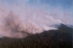 Požáry na Sibiři