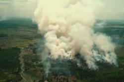 Vypalování brazilského deštného pralesa