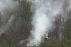Hořící les na Sibiři