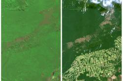 Deforestace Amazonie ze satelitu