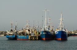 Lodě v přístavu Wladyslawowo