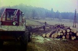 Novinky v dřevozpracujícím průmyslu