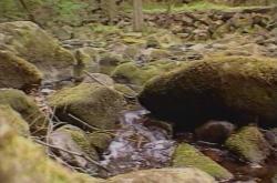 Železné hory se staly chráněnou krajinnou oblastí