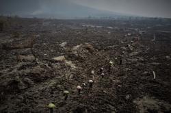 Následky erupce sopky Nyiragongo