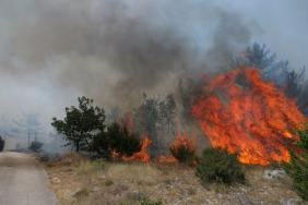 Lesní požáry v Chorvatsku