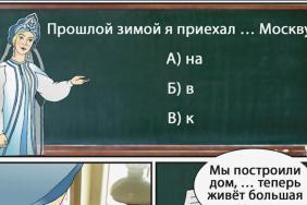 Ruská příručka pro imigranty