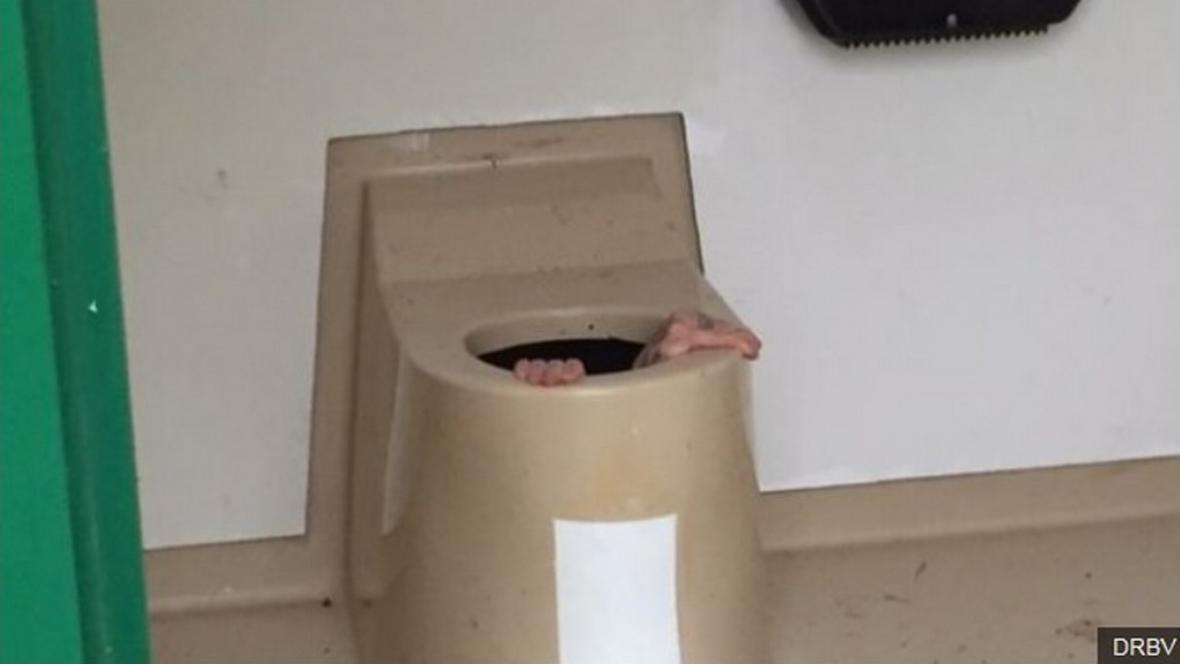 Mladík skočil kamarádovi v Norsku pro mobil do záchodu