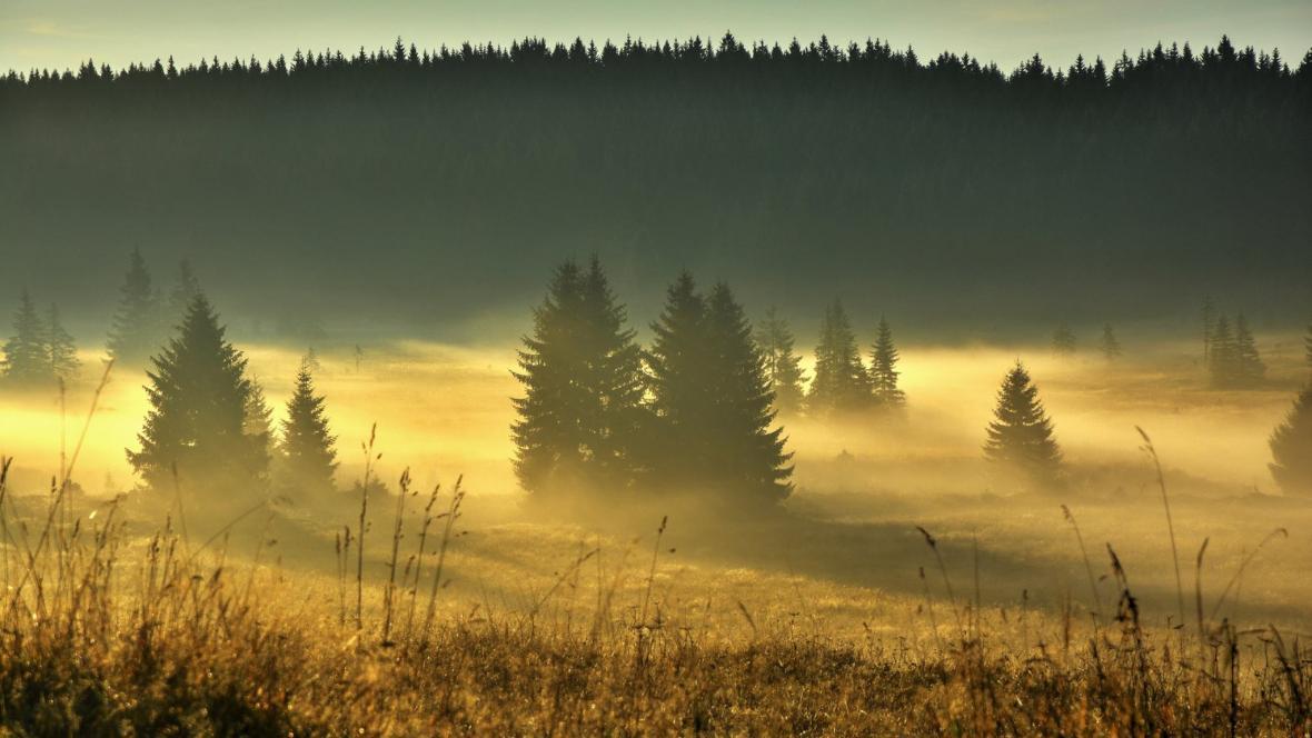 Podzim v Krušných horách