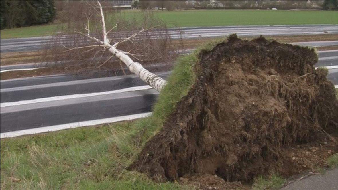 Vítr na západě Německa vyvracel stromy