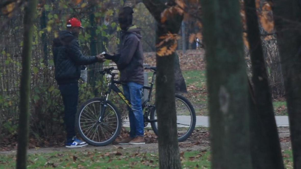 Dealeři v Görlitzer Parku