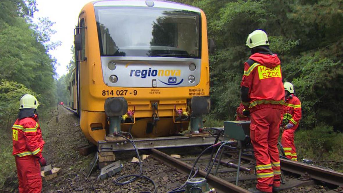 Spadlý strom zastavil vlak na Třeboňsku - září 2014