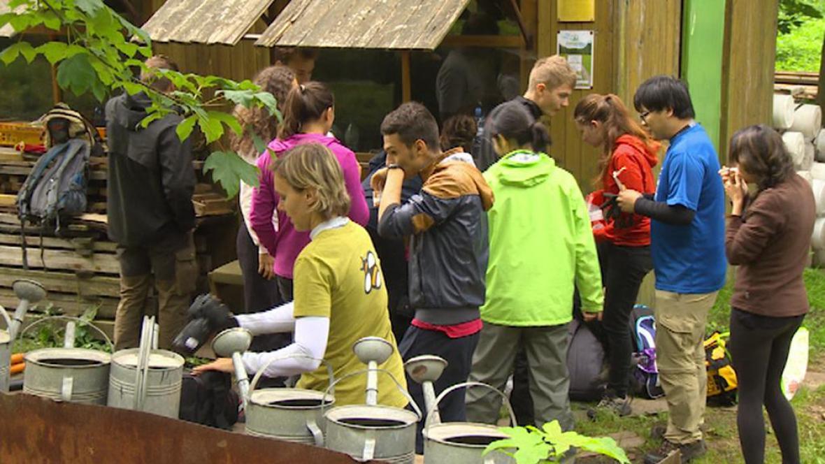 Zahraniční studenti sází stromy v okolí Ještědu