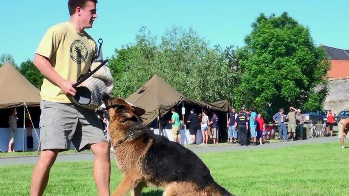 Ukázka výcviku psů