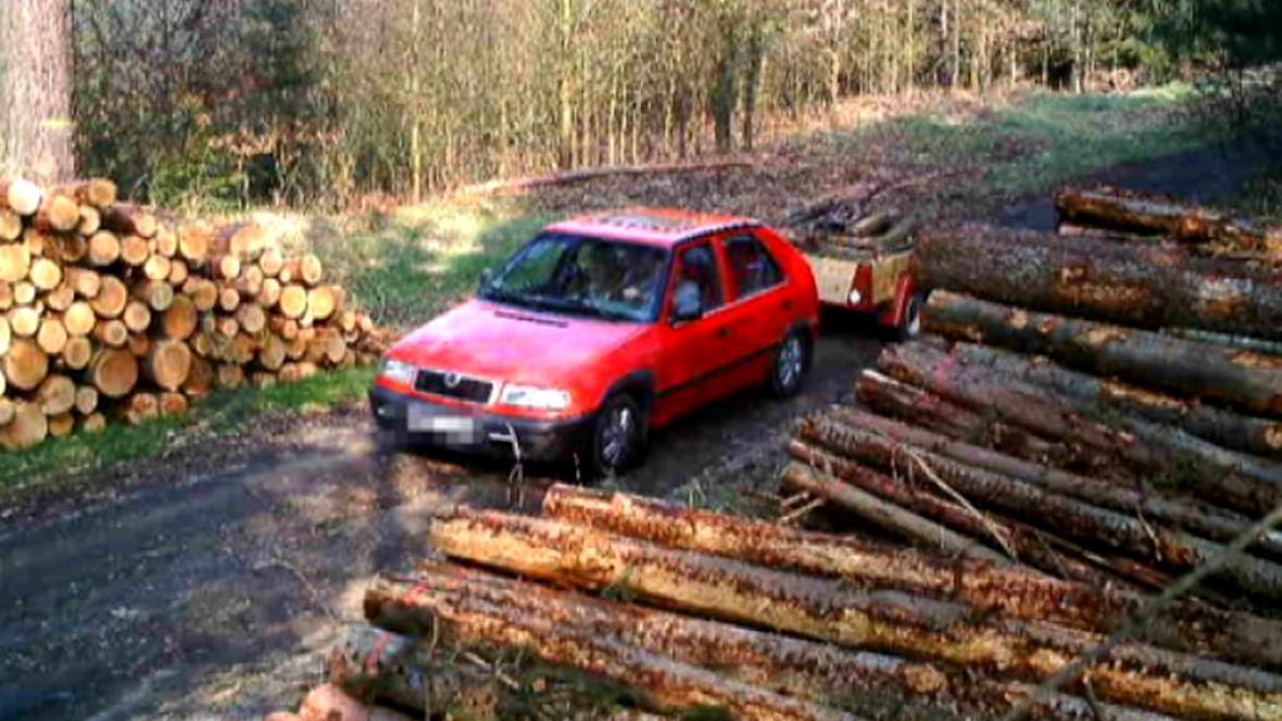 Zloději dřeva zachycení fotopastí