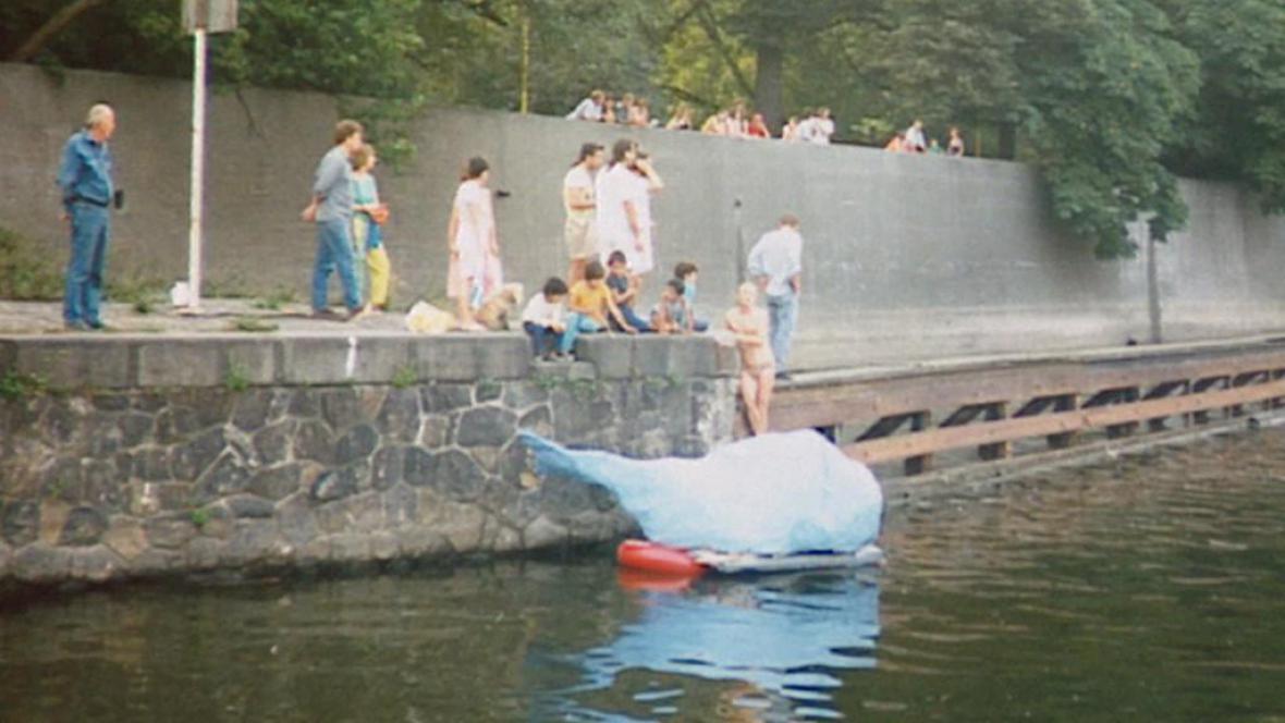 Společnost pro veselejší současnost - modrá velryba