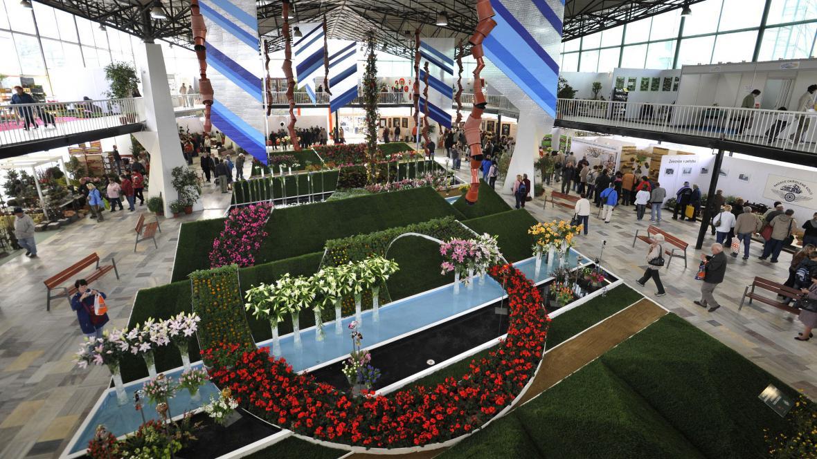 Flora Olomouc 2012