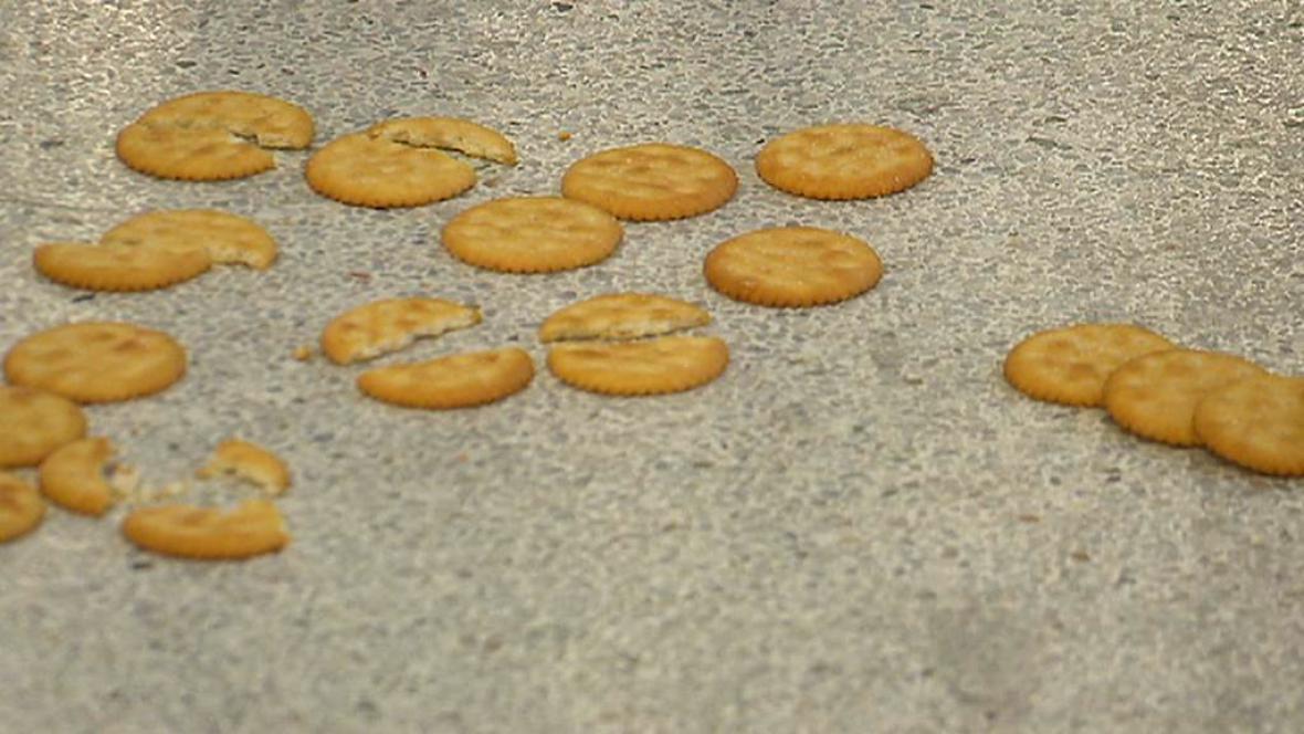 Umělecky pojaté sušenky na výstavě v Bari