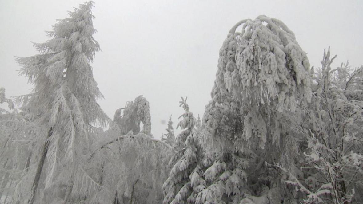 Alšovka v Krušných horách