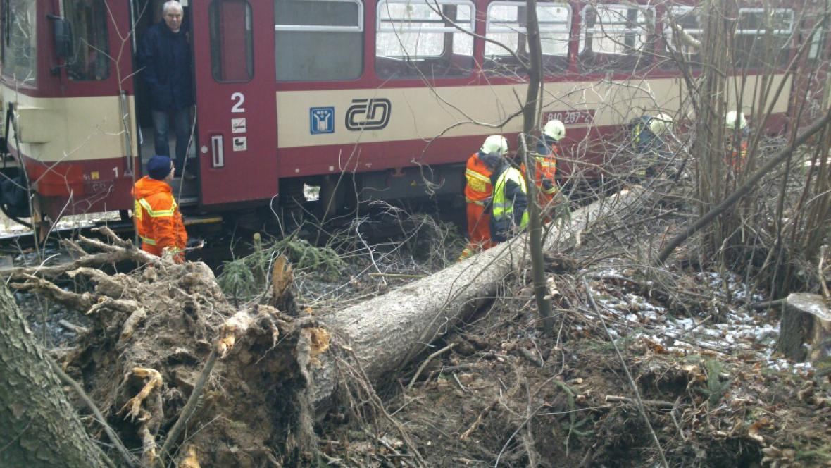 Nehoda vlaku se stromem