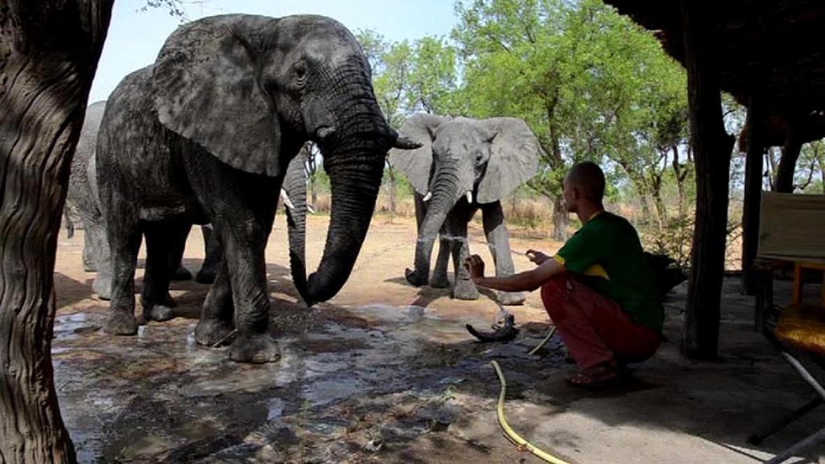 Arthur F. Sniegon se slony