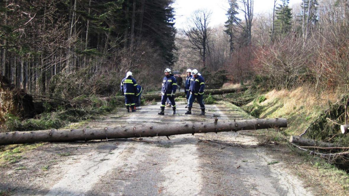 Spadlé stromy na Zlínsku