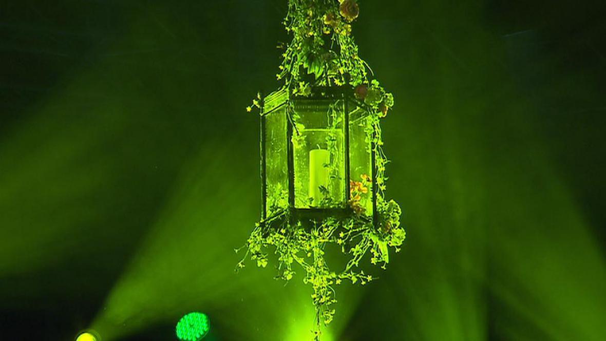 Světlo pro Světlušku