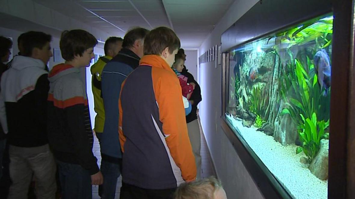 Rybářské muzeum ve Vodňanech