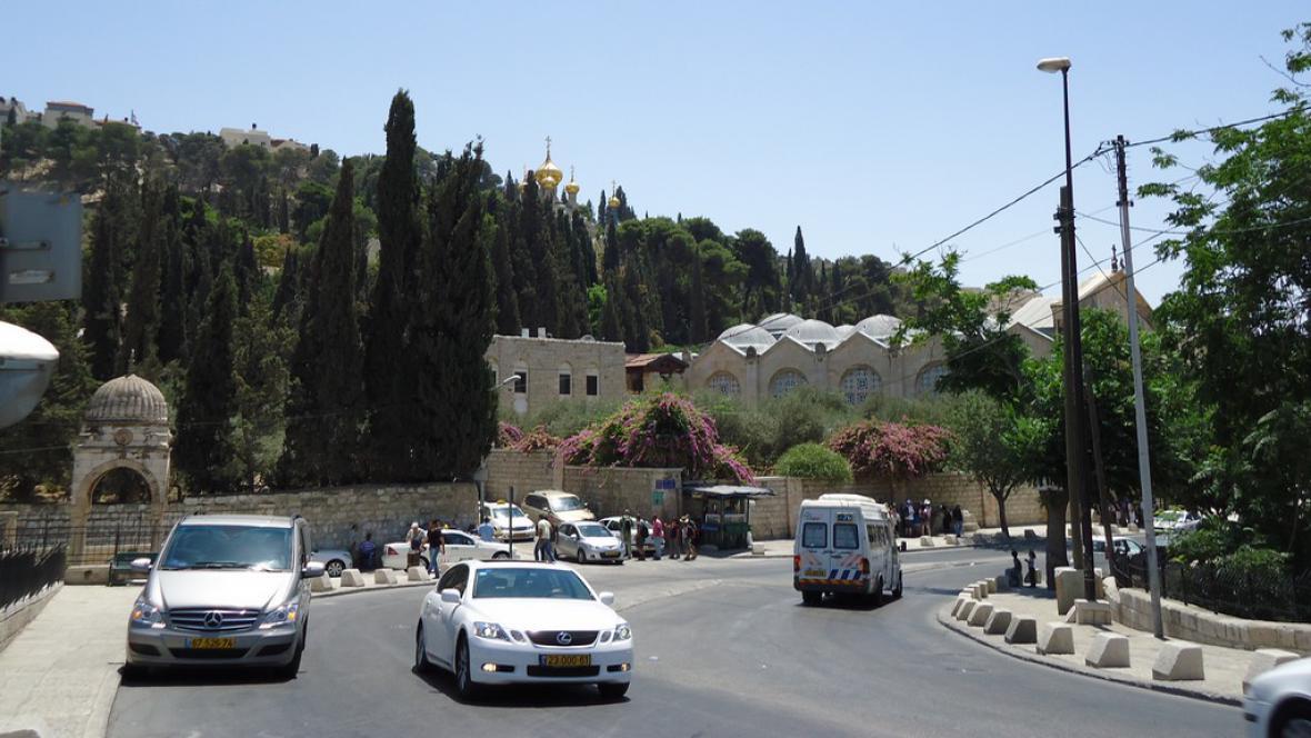 Pohled na Olivetskou horu