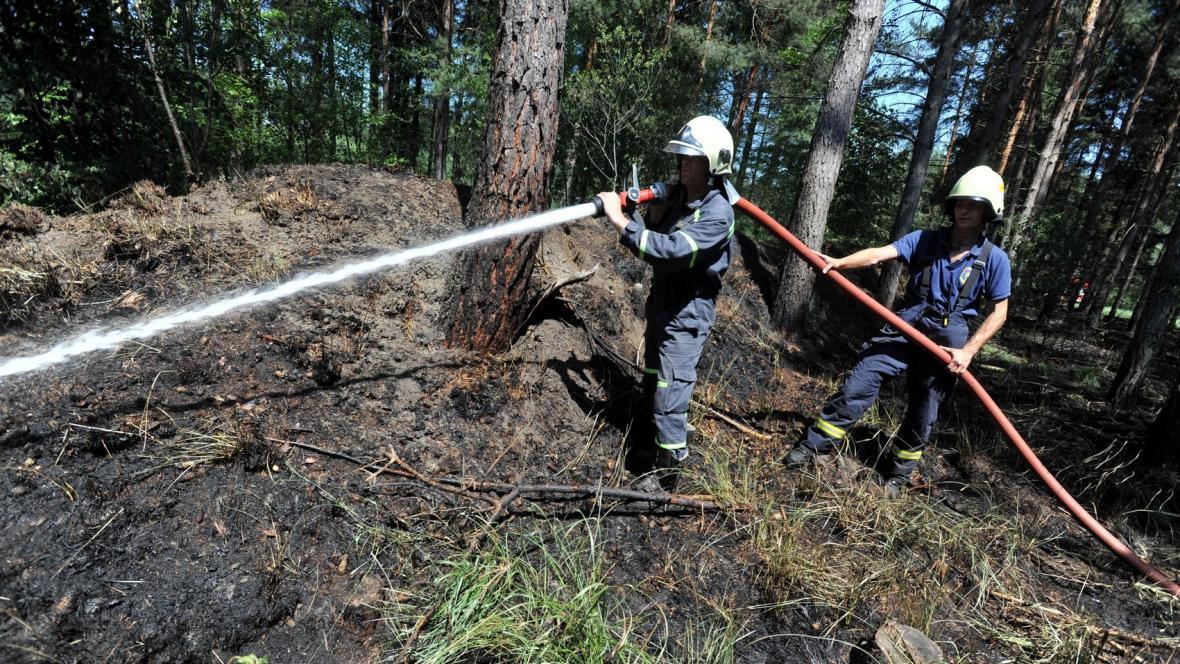 Požár lesa