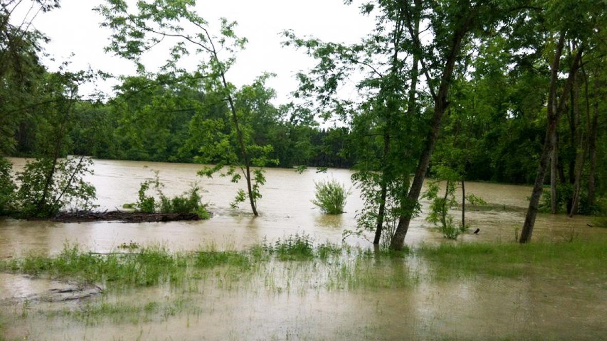 Zaplavená říční niva