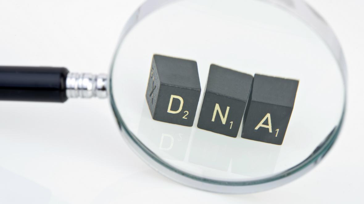 Zkoumání DNA