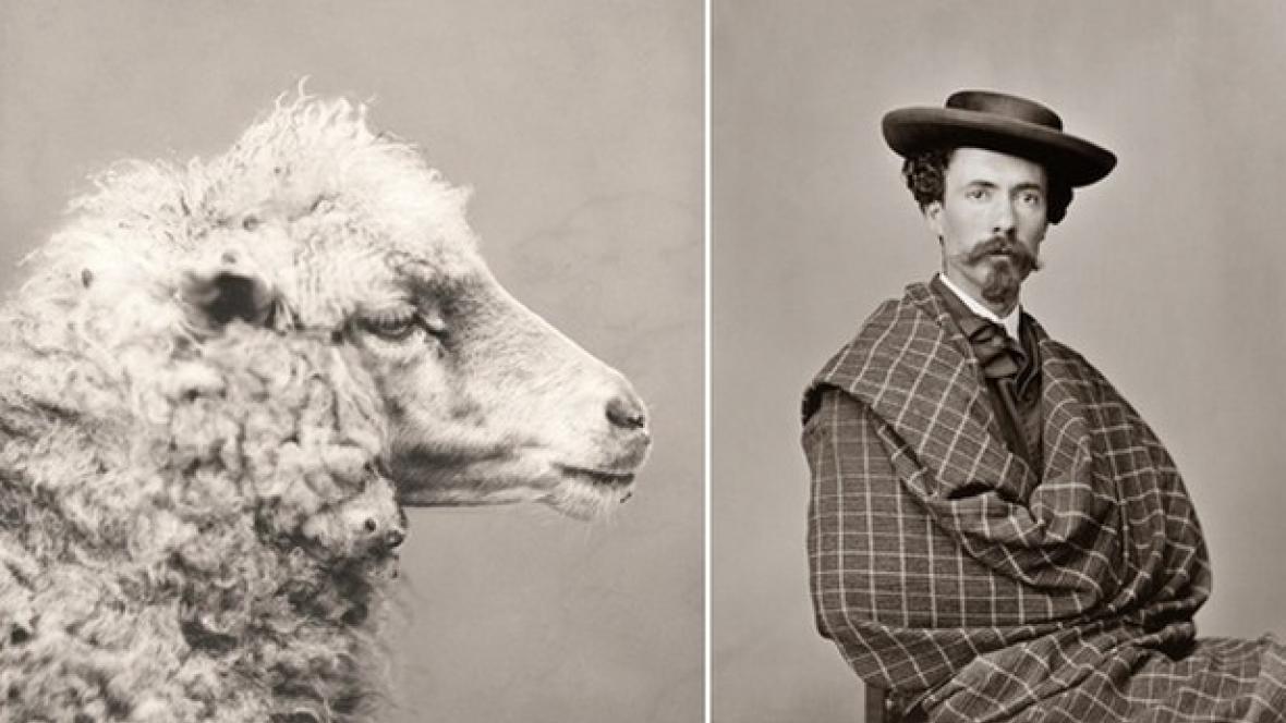 Carlos Relvas / Ovce (kolem r. 1870) a Autoportrét (1868–59)