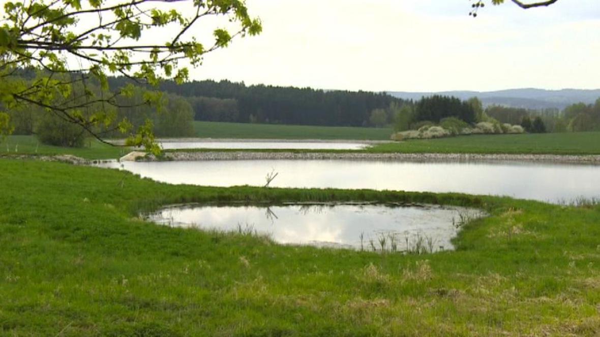 Rybník v Meziříčku