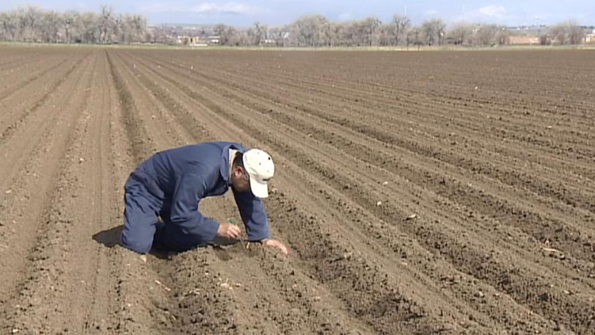 Sucho v Coloradu
