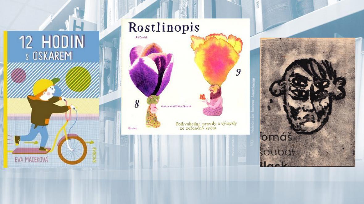 Nejkrásnější české knihy 2012
