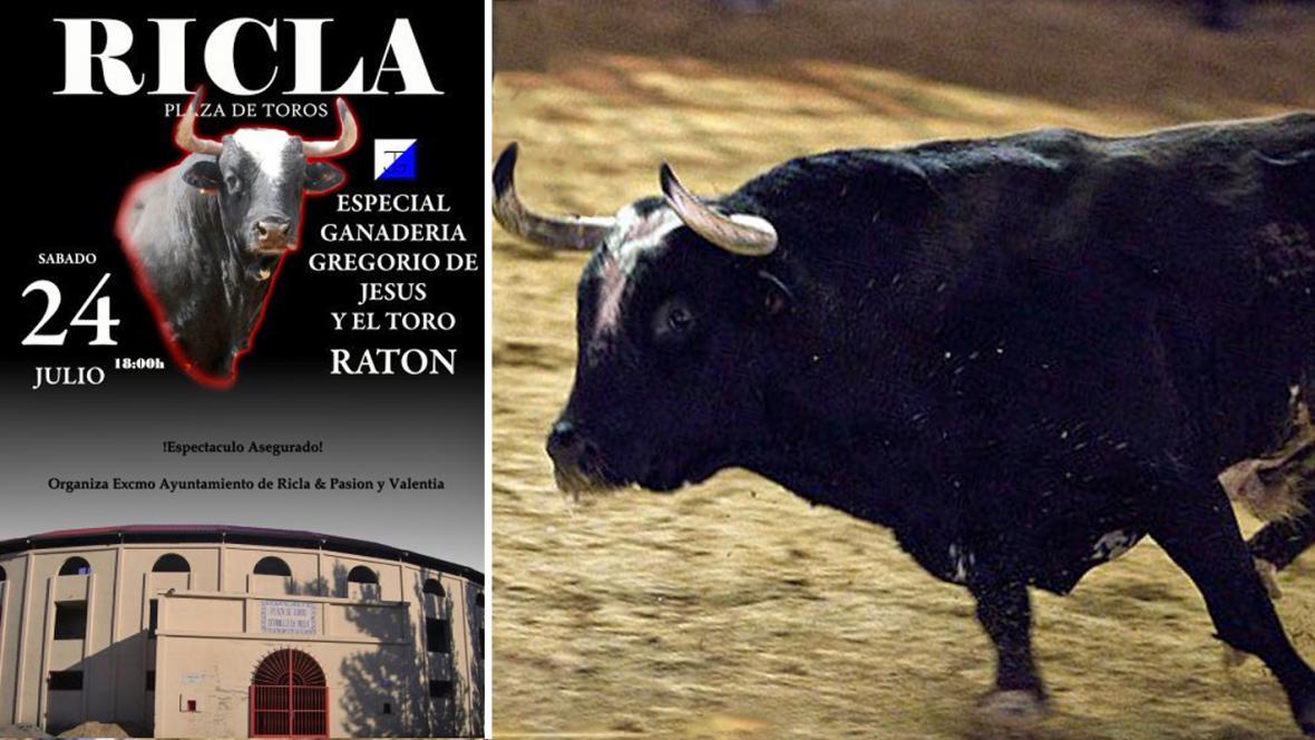 Legendární býk Ratón