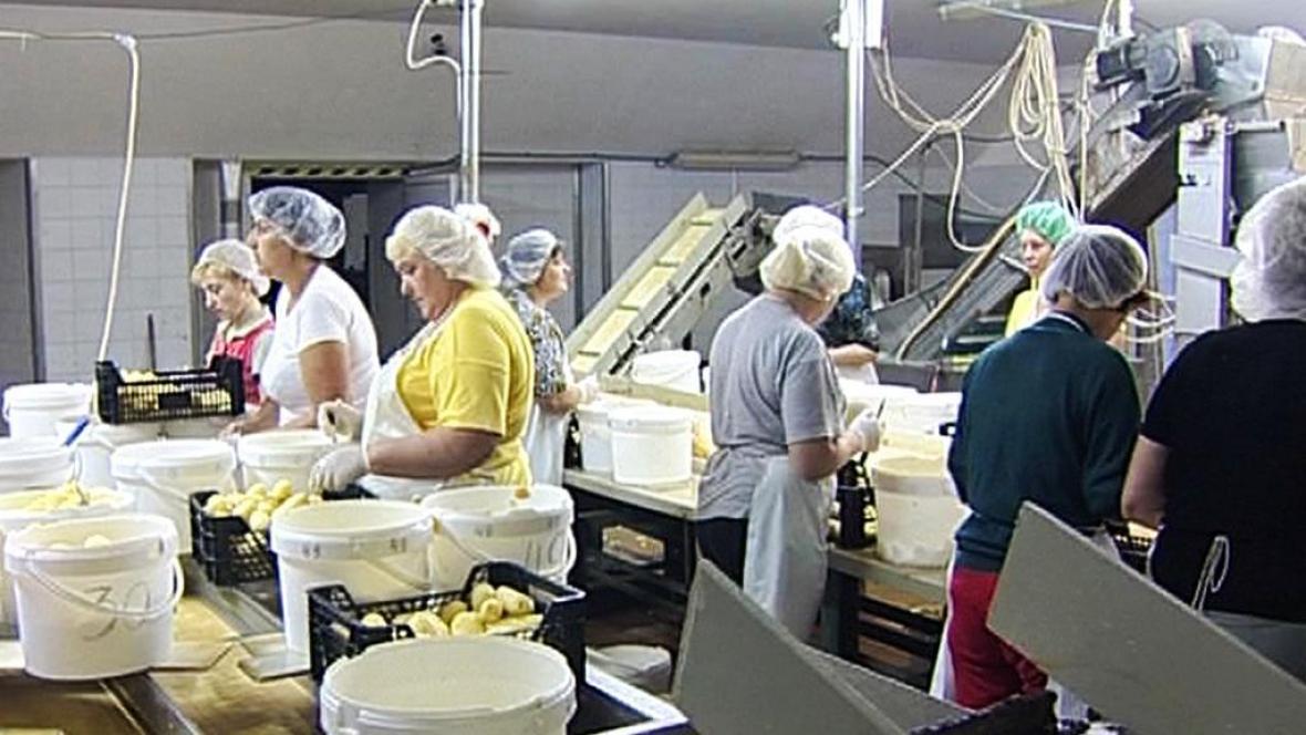 Cizinci při práci v Česku