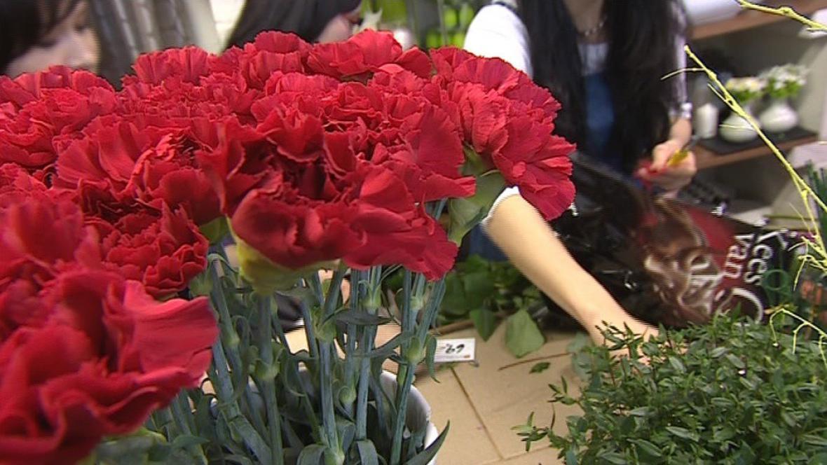 Tradiční květinou MDŽ se v minulosti stal rudý karafiát