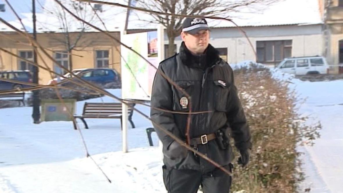 Policejní hlídka v obci