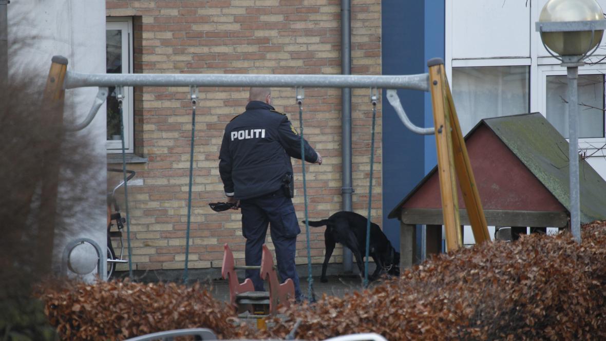 Policie u Hedegaardova bytu